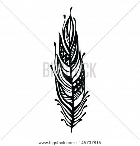 Hand Drawn Feathers. Ink Vector Illustration. Boho Style Design Elements. Ethnic Creative Doodles. I