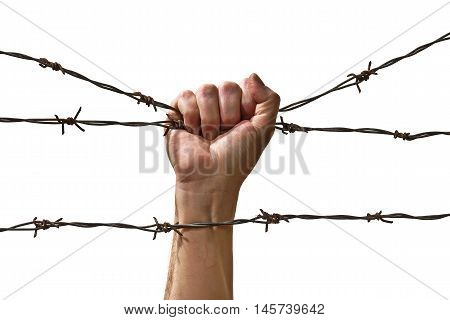 hand behind barbed wire on the white background