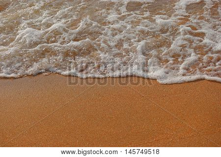 Sand beach and wave with a lot of space for text