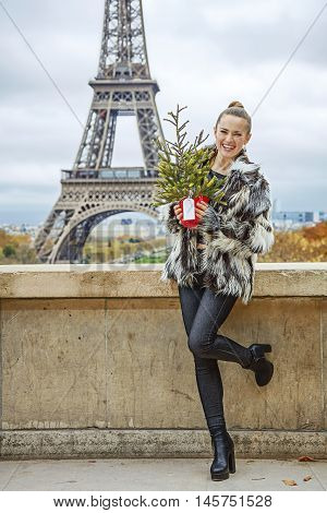 Fashion-monger With Christmas Tree Against Eiffel Tower, Paris