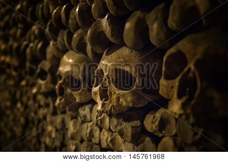 Skulls and bones in Paris Catacombs, close up