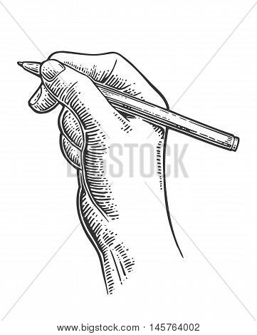 Female hand holding a pencil. Vector black vintage engraving illustration for poster label banner web. Isolated on white background