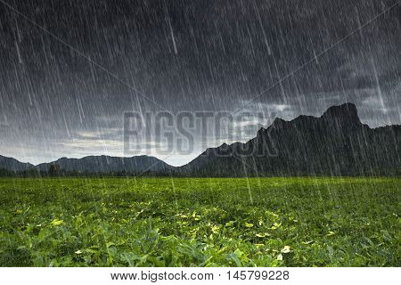 Falling Rain At Khao Jeen Lae, Mountain At Lopburi, Thailand