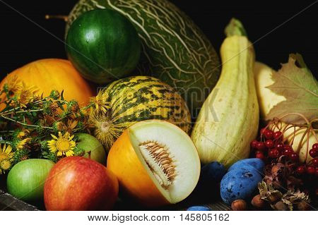 still life with seasonal fruits and vegetables . On a dark background