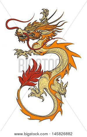 Asian dragon vector illustration. Chinese vintage oriental draghi