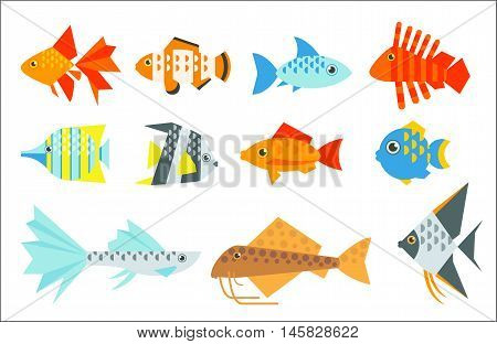 Aquarium fish set. Goldfish, angelfish, catfish, veiltail, clownfish, guppy, tetraodon, globefish, butterflyfish, radiata lionfish. The inhabitants of marine reef aquariums and ponds flat illustration
