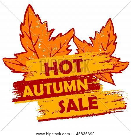 hot autumn sale banner - text in orange and brown drawn label with leaf signs, business seasonal shopping concept, vector
