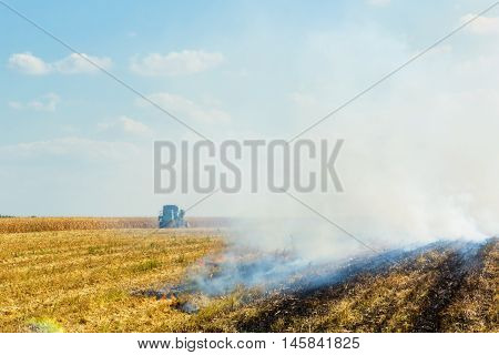 Corn harvesting and burning of stubble field in the autumn day on the background of blue sky with clouds
