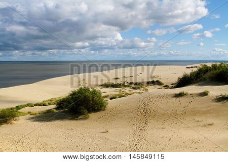 Grasses and Dunes of the Curonian Spit
