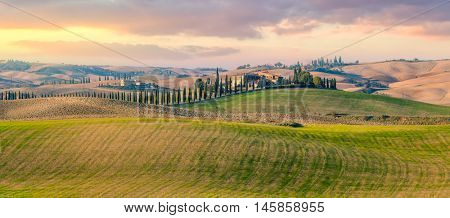 Majestic Panoramic view of typical Tuscany rural landscape. Beautiful hills at the sunrise time, cypresses, fields and countryside road. Italy, Europe