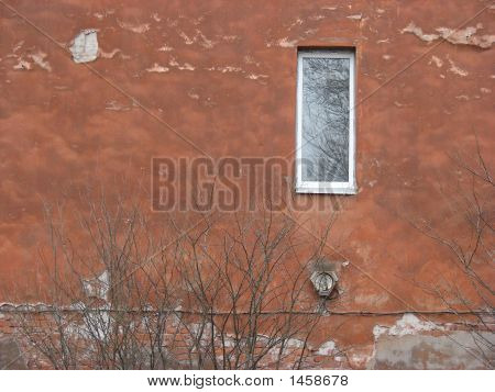 Window In An Old Redpainted Wall & Bush.