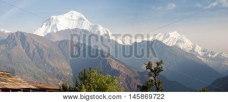View of mount Dhaulagiri from Gorepani village Annapurna circuit trek Nepal