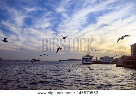 Istanbul Turkey. Sea of Marmara the Bosphorus in the evening. sunset seagulls and people. Istanbul Besiktas pier appears.