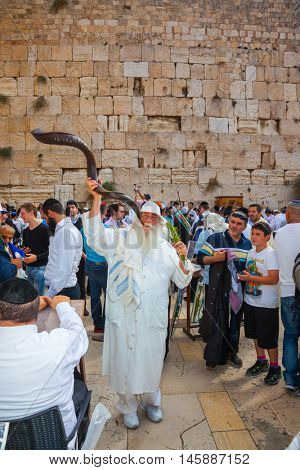 JERUSALEM, ISRAEL - OCTOBER 12, 2014:  The Jews of tallit hold four ritual plants. Religious Jews came to the Western Wall of the Temple. The old man blows the shofar
