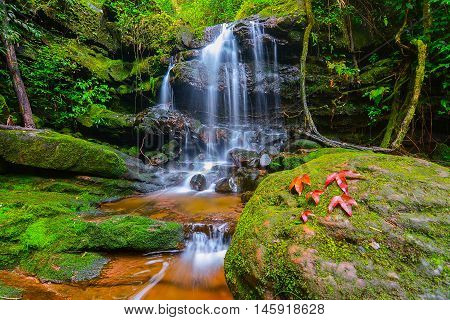 Waterfall an maple leaves with moss on the rocks at Phu Soi Dao in Uttaradit, Thailand.