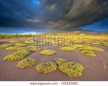 Kalloni Estuary Sunrise