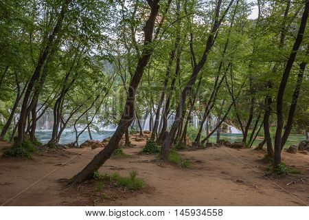 Stunning landscape of forest and lake in KRKA National Park