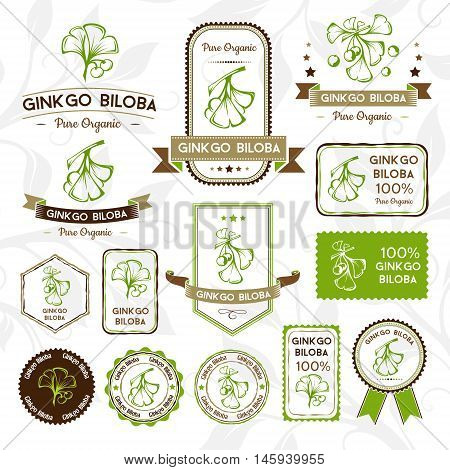 Ginkgo biloba. Labels stamps and stickers set. Vector decorative isolated elements for package design.