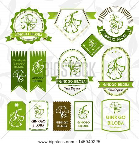 Ginkgo biloba. Labels stickers and badges collection. Vector decorative isolated elements for package design.