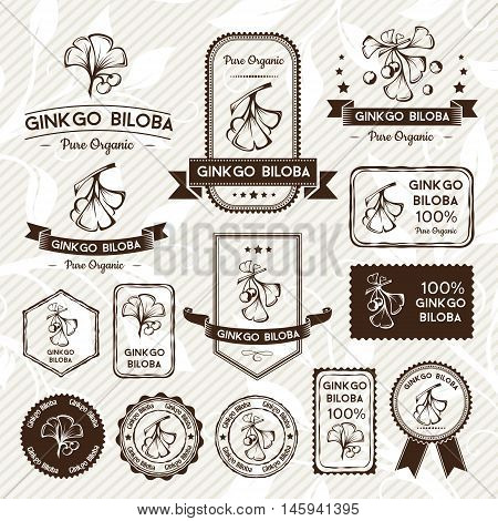 Ginkgo biloba. Labels stamps and stickers set. Vector decorative isolated elements for package design. Monochrome version