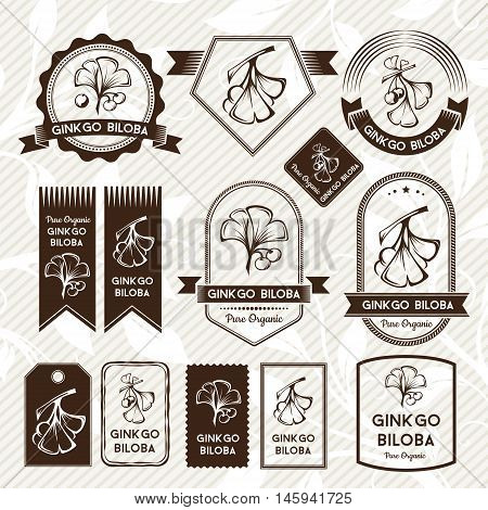 Ginkgo biloba. Labels stickers and badges collection. Vector decorative isolated elements for package design. Monochrome version