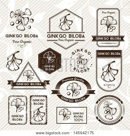 Ginkgo biloba. Labels and stickers collection. Vector decorative isolated elements for package design. Monochrome version
