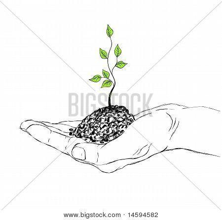 Hand And Sapling