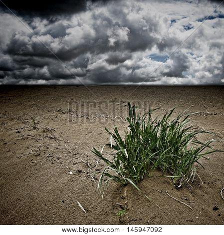 Desertification dramatic landscape, desert and dark clouds