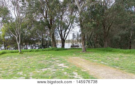 Bibra Lake reserve wetland landscape with resting bench overlooking the peaceful lake view in treed setting with wildflowers in Western Australia.