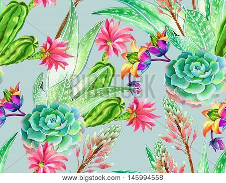 seamless pattern with succulents and cactuses. Blossoming succulents design in watercolor illustration. succulents bouquets for textile, fashion, interior. pale pastel palette.