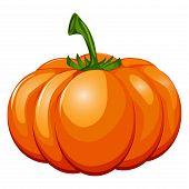 Fresh orange halloween pumpkin isolated on white vector. Orange autumn food fresh pumpkin vegetable holiday decoration. Seasonal ripe isolated pumpkin fresh october halloween symbol. poster
