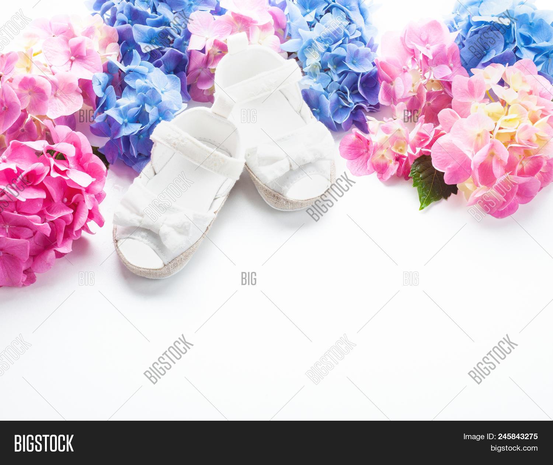 Cute newborn baby girl image photo free trial bigstock cute newborn baby girl shoes baby shower birthday invitation or greeting card m4hsunfo