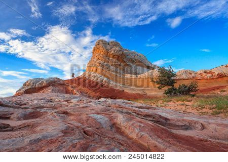 Colorful Ripples In A Sandstone Over Bright Blue Sky. White Pocket, A Group Of Domes And Ridges, Is