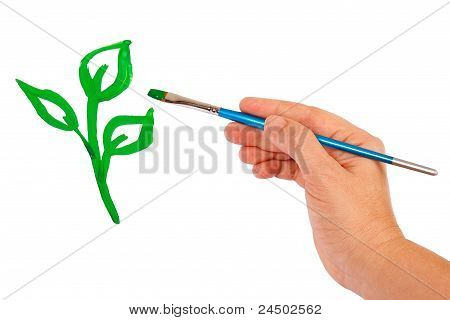 Hand draws a green sprout on a white background poster