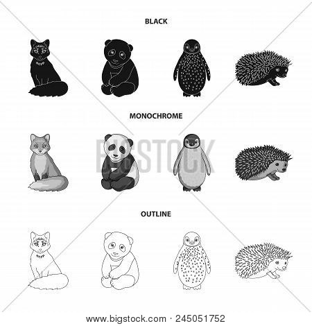 Fox, Panda, Hedgehog, Penguin And Other Animals.animals Set Collection Icons In Black, Monochrome, O