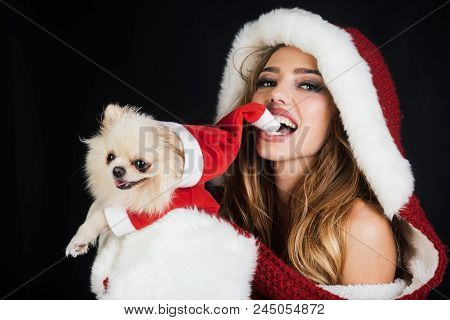 Holiday Festive Season Theme - Cute Santa Girl And Her Dog Wearing Santa Claus Clothes Isolated On B