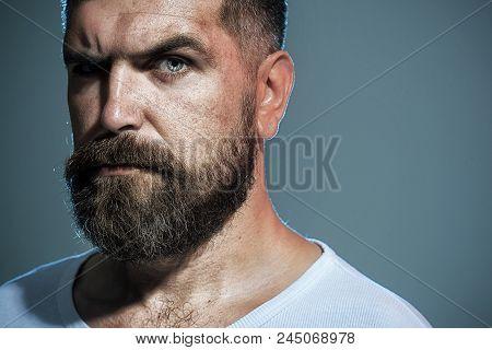 Bearded Man. Portrait Of Masculinity. Stylish Hipster Brutal Man With Beard, Mustache, Beautiful Hai