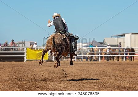 A Cowboy Competing In The Bull Riding Event At A Country Rodeo