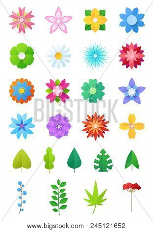 Paper Flowers Vector Floral Decoration Or Flowered Greeting Card Decor For Flowering Invitation On B