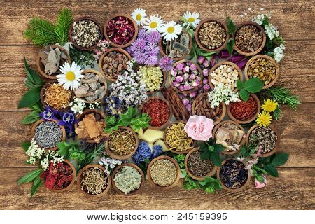 Herbal medicine with herb, spices and flowers used in chinese and natural alternative remedies with fresh herbs and flowers on rustic background. Top view.