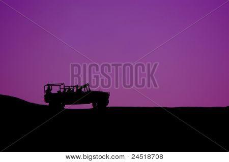 Safari Silhouette violet variation