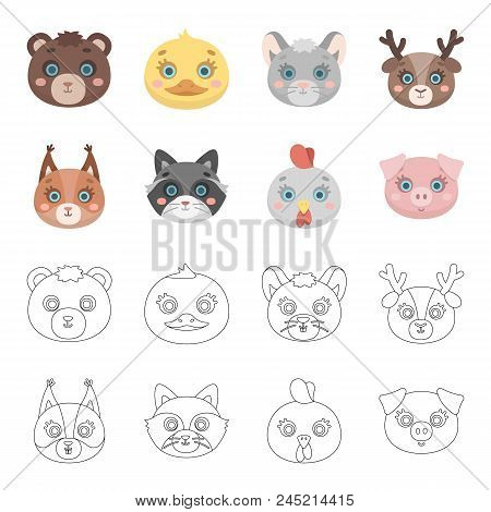Protein, Raccoon, Chicken, Pig. Animal's Muzzle Set Collection Icons In Cartoon,outline Style Vector