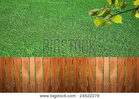Fence Near The Grass