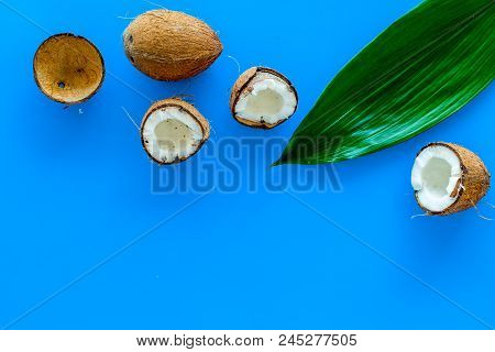 Tropical Composition With Coconut. Whole Coconuts And Coconut Cut In Half Near Pulm Leaves On Blue B