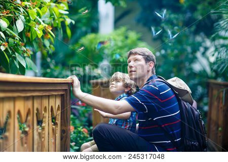 Father And Preschool Kid Boy Discovering Flowers, Plants And Butterflies At Botanic Garden. Family,