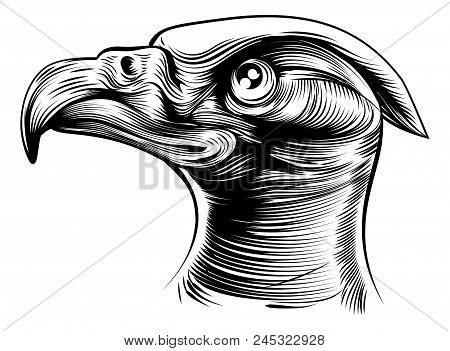 An Original Illustration Of An Eagles Head In A Vintage Woodblock Or Woodcut Style