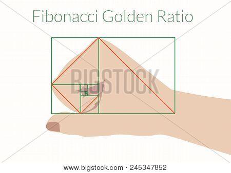Graphical Explanation Of The Algorithm Fibonacci. Human Fist And Fibonacci Golden Ratio. Vector Illu