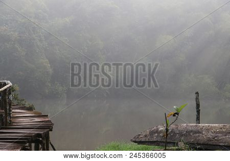 The Old Wooden Bridge In The Forest With Mist And Soft Light In Morning Time Peaceful And Clam Beaut