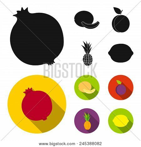 Melon, Plum, Pineapple, Lemon.fruits Set Collection Icons In Black, Flat Style Vector Symbol Stock I