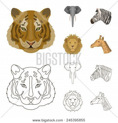 Tiger, Lion, Elephant, Zebra, Realistic Animals Set Collection Icons In Cartoon, Outline Style Vecto